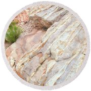 Round Beach Towel featuring the photograph Sandstone Feet In Valley Of Fire by Ray Mathis