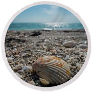 Sanibel Island Sea Shell Fort Myers Florida Round Beach Towel