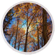 Round Beach Towel featuring the photograph Santa Fe Beauty II by Stephen Anderson