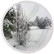 Santa Fe Snowstorm 2017 Round Beach Towel by Joseph Frank Baraba
