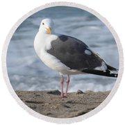 Santa Monica Seagull Round Beach Towel