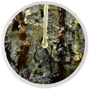 Round Beach Towel featuring the photograph Sap Drip by Robert Knight