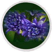 Sapphire Blue Chrysanthemums Round Beach Towel