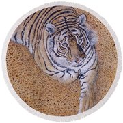 Round Beach Towel featuring the painting Sasha by Tom Roderick