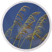 Round Beach Towel featuring the photograph Saturday Sway by Michiale Schneider