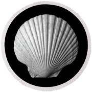 Scallop  Seashell Round Beach Towel by Jim Hughes