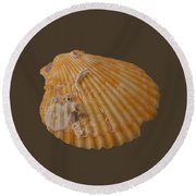 Scallop Shell With Guests Transparency Round Beach Towel