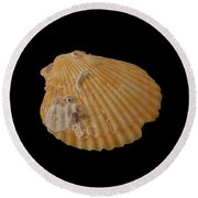 Scallop With Guests Round Beach Towel