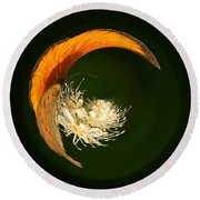Round Beach Towel featuring the photograph Scarce Copper 4 by Jouko Lehto
