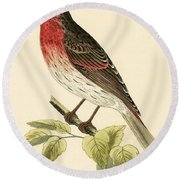 Scarlet Bullfinch Round Beach Towel