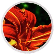 Round Beach Towel featuring the photograph Scarlet Flower  by Joseph Hollingsworth