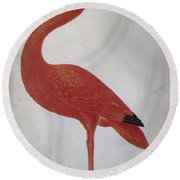 Scarlet Ibis With An Egg Round Beach Towel