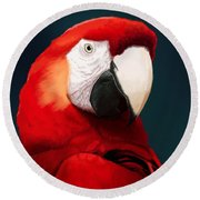 Scarlet Macaw Round Beach Towel