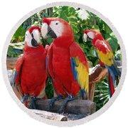 Scarlet Macaws Round Beach Towel by Ellen Henneke