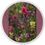 Round Beach Towel featuring the photograph Scarlet Paintbrush by David Chandler