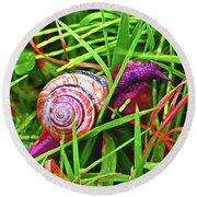 Scarlet Snail Round Beach Towel by Adria Trail