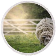 Sheep Round Beach Towel by Joana Kruse