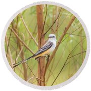 Round Beach Towel featuring the photograph Scissortail In Scrub by Robert Frederick