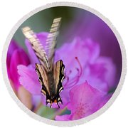 Round Beach Towel featuring the photograph Scissorwings by Susan Capuano