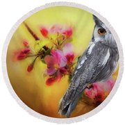 Scops Owl Round Beach Towel by Suzanne Handel
