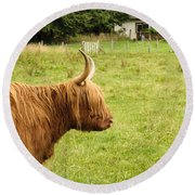 Round Beach Towel featuring the photograph Scottish Cattle Farm by Christi Kraft