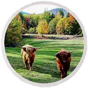 Round Beach Towel featuring the photograph Scottish Highland Cattle - New Hampshire Fall Foliage by Joseph Hendrix