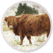 Scottish Red Highland Cow In Winter Round Beach Towel