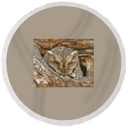 Screech Owl On Spring Creek Round Beach Towel