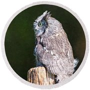 Screech Owl Profile Round Beach Towel
