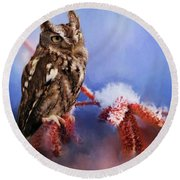Screech Owl Round Beach Towel by Suzanne Handel