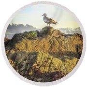 Sea Bird On Point Lobos Round Beach Towel