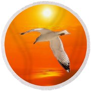 Round Beach Towel featuring the photograph Sea Gull by Athala Carole Bruckner