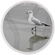 Sea Gull Walking In Surf Round Beach Towel