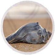 Sea Life Round Beach Towel