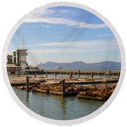 Sea Lions At Pier 39 In San Francisco Round Beach Towel