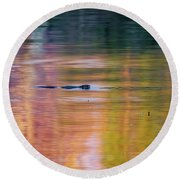 Round Beach Towel featuring the photograph Sea Of Color by Bill Wakeley