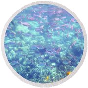 Round Beach Towel featuring the photograph Sea Of Fish by Karen Nicholson
