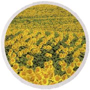 Sea Of Yellow Round Beach Towel
