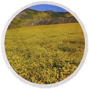 Round Beach Towel featuring the photograph Sea Of Yellow Up In The Temblor Range At Carrizo Plain National Monument by Jetson Nguyen