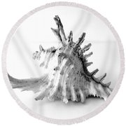 Round Beach Towel featuring the photograph Sea Shell by Gina Dsgn