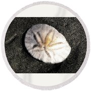 Round Beach Towel featuring the photograph Sea Shell by Norman Hall