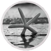 Round Beach Towel featuring the photograph Sea Star Bw Vert by Laura Fasulo
