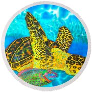 Sea Turtle And Parrotfish Round Beach Towel