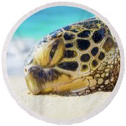 Sea Turtle Resting At The Beach Round Beach Towel