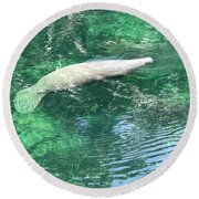 Sea Whale Round Beach Towel