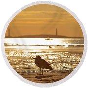 Seagull Admiring Thacher Island Gloucester Ma Good Harbor Beach Round Beach Towel