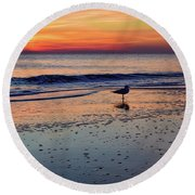 Round Beach Towel featuring the photograph Seagull At Sunrise by Nicole Lloyd