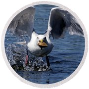 Seagull Flight Round Beach Towel