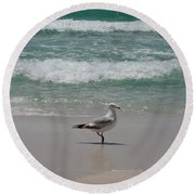 Seagull Round Beach Towel by Megan Cohen
