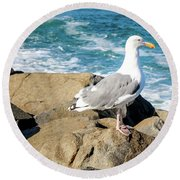 Seagull On Jetty Round Beach Towel